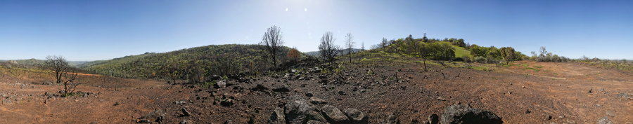 Burned Chaparral Area On Pacheco Ridge